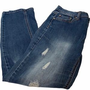 Altair's state Distressed Jeans